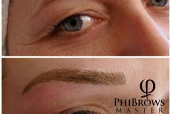 PhiBrows.2